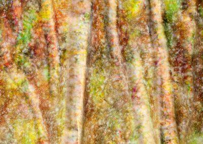 Pintura-abstracta-arte-Johnny-Garcia-Aguascalientes-24